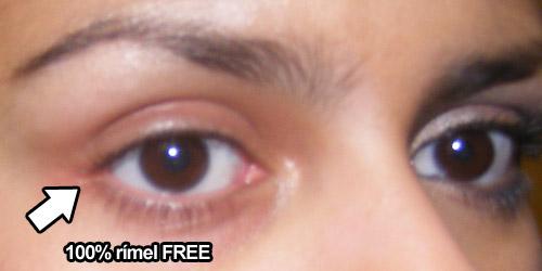 Resenha: Demaquilante Bifásico Para Área dos Olhos Panvel Faces - Parte II