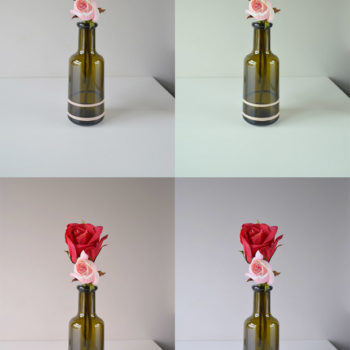 Ap & Decoração: De Frasco de Azeite a Vaso de Flores