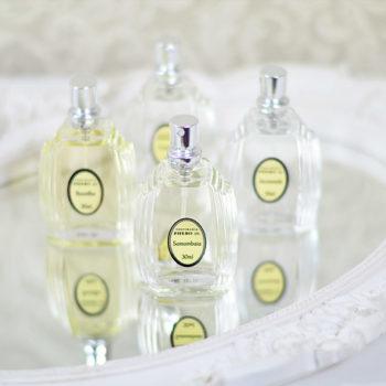 Perfume: Fragrâncias Phebo (Carnaval, Jacarandá, Baunilha e Samambaia)
